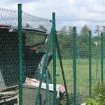 Sloupek DAMIPLAST® 42/1,5/2200 zelený vč.čepičky, 220 cm - 2/2